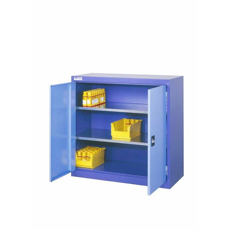 Industrial Cabinet With Hinged Doors